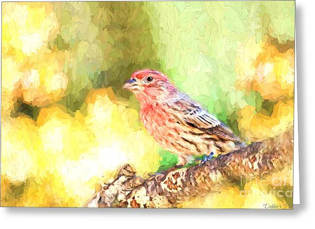 Male House Finch - Digital Paint Greeting Card