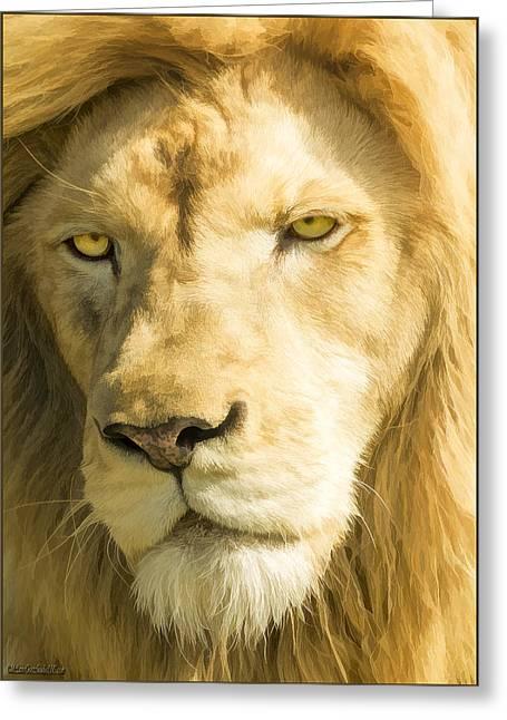 Male Lion Greeting Card by LeeAnn McLaneGoetz McLaneGoetzStudioLLCcom