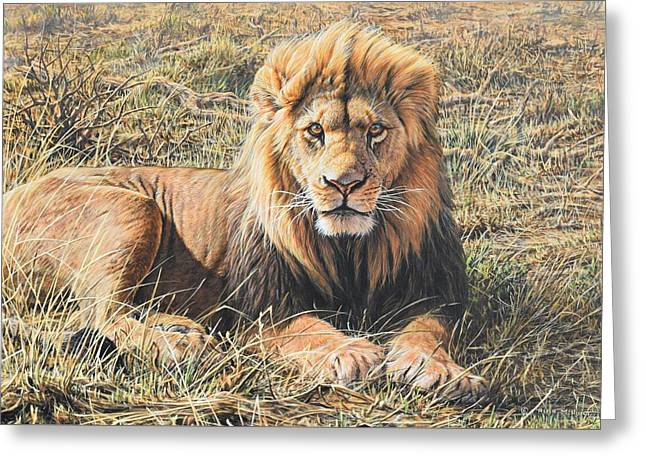 Greeting Card featuring the painting Male Lion Portrait by Alan M Hunt