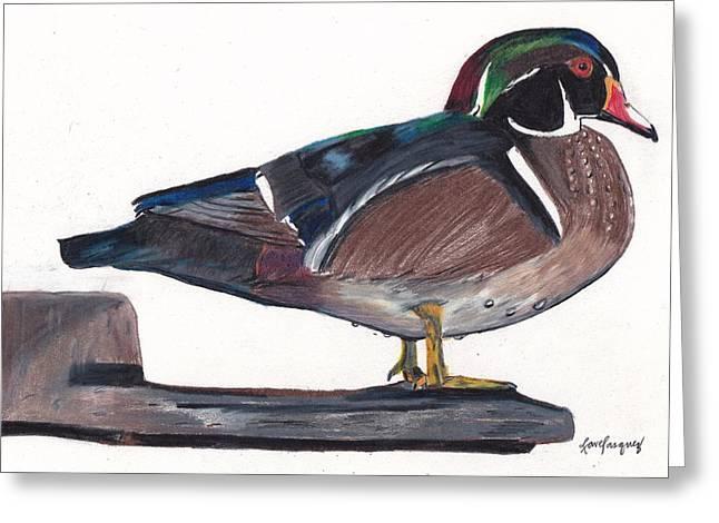 Mallard Duck Drawing by Lea Velasquez