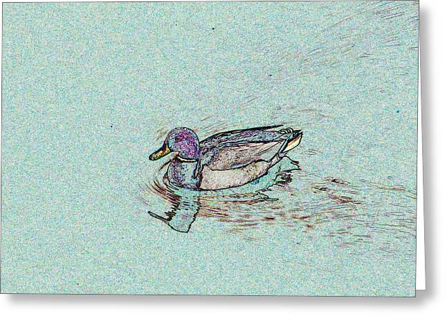 Mallards Edge Greeting Card by Tim Allen