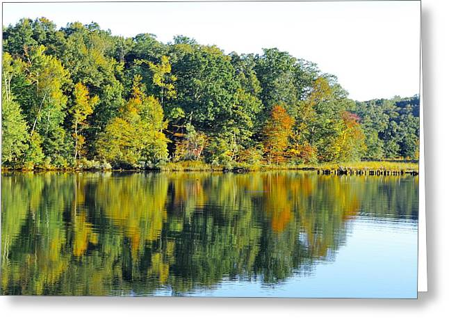 Mallows Bay Greeting Card