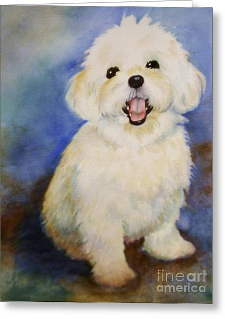 Maltese Named Ben Greeting Card by Marilyn Jacobson