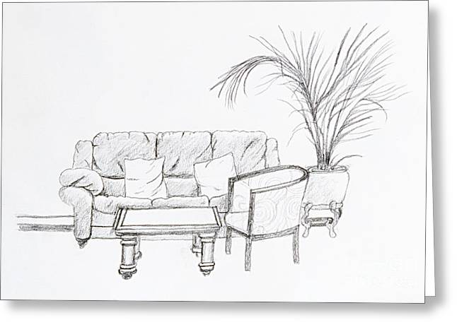 Maltese Sofa Greeting Card by Stephen Brooks
