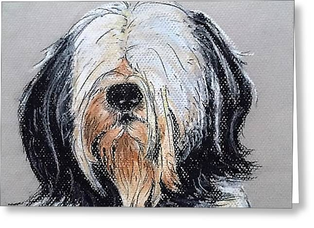 Maltese Terrier Dog Greeting Card by Kelly Goss