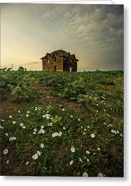 Greeting Card featuring the photograph Mammatus And Flowers  by Aaron J Groen