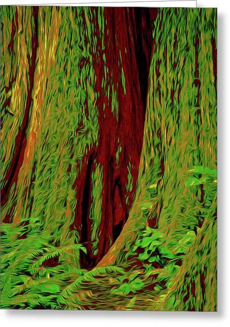 Mammoth Ancient Cedars Greeting Card