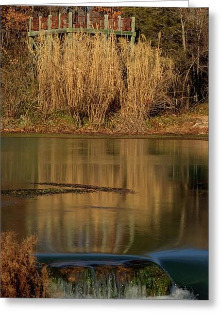 Mammoth Spring Arkansas Greeting Card by Douglas Barnett