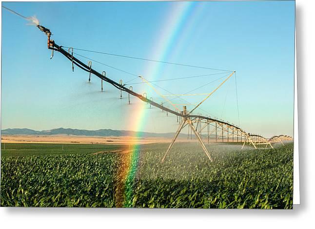 Man Made Rainbow Greeting Card by Todd Klassy