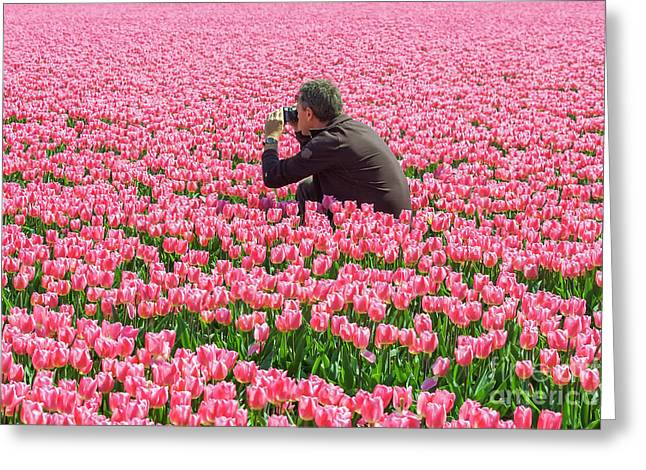 Man Photographing Tulips Greeting Card