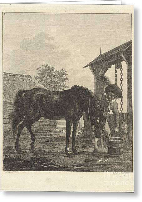 Man Shows A Horse Drinking From A Bucket Greeting Card by Celestial Images