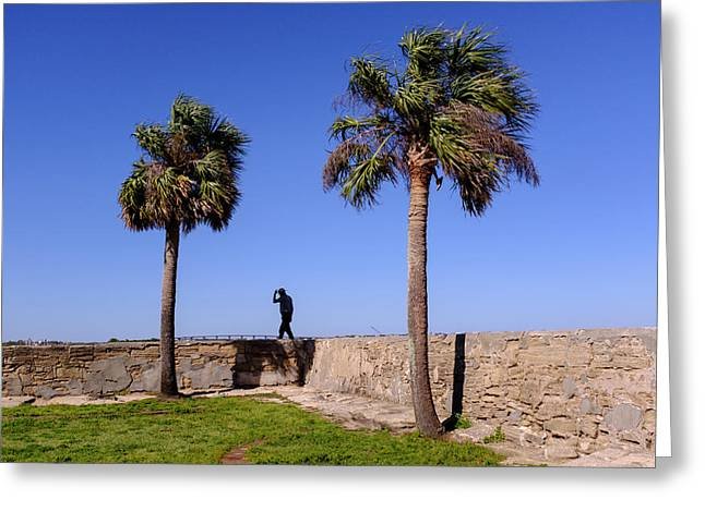 Man With A Hat On The Wall With Palm Trees In Saint Augustine Fl Greeting Card
