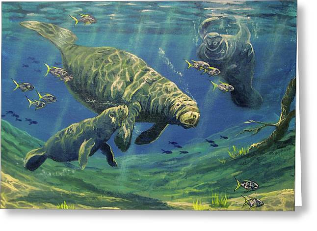 Manatees Greeting Card by Marco Antonio Aguilar