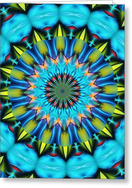 Recently Sold -  - Abstract Forms Greeting Cards - Mandala 111511 A Greeting Card by David Lane