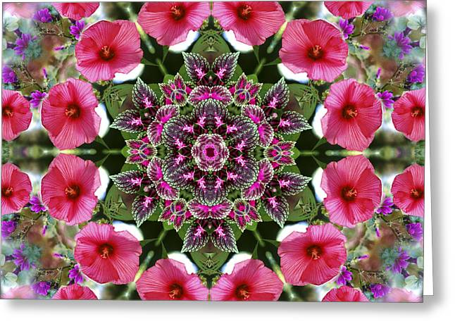 Mandala Pink Patron Greeting Card