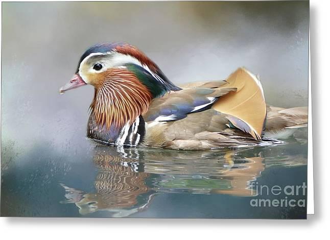 Mandarin Duck Swimming Greeting Card