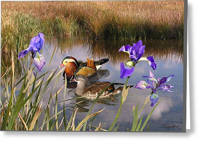 Mandarin Ducks And Wild Iris Greeting Card