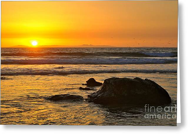 Mango Horizon Greeting Card by Johanne Peale