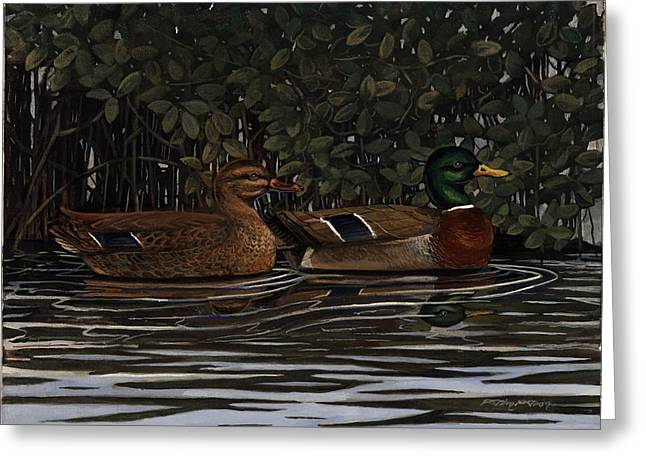 Mangrove Mallards Greeting Card by Timothy Tron
