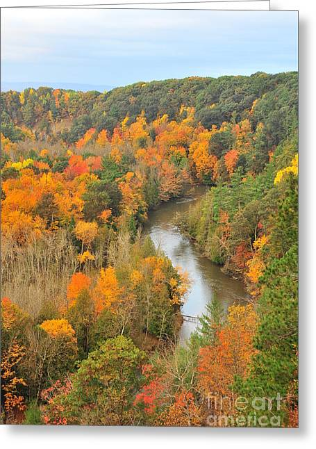 Manistee River In Autumn Greeting Card