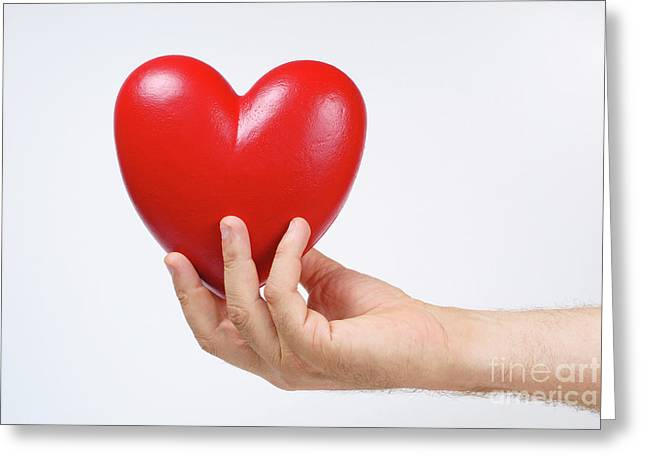 One Mature Man Only Greeting Cards - Mans hand holding heart-shaped object Greeting Card by Sami Sarkis