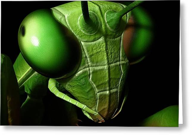 Mantis Head Greeting Card