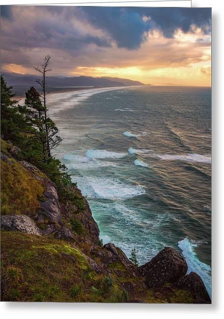Manzanita Sun Greeting Card by Darren White