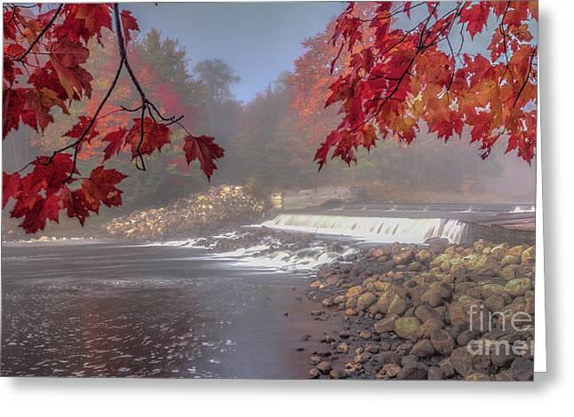 Maple Leaf Frame Ws Greeting Card