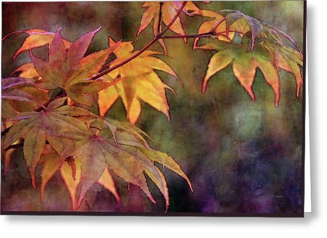 Maples Golden Glow 5582 Idp_2 Greeting Card