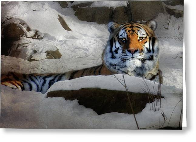 Amur Greeting Cards - Mara Greeting Card by Lori Deiter