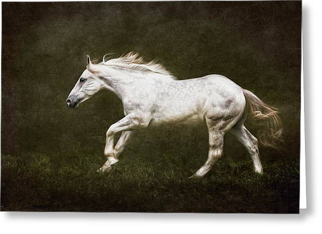 Marble Horse Greeting Card