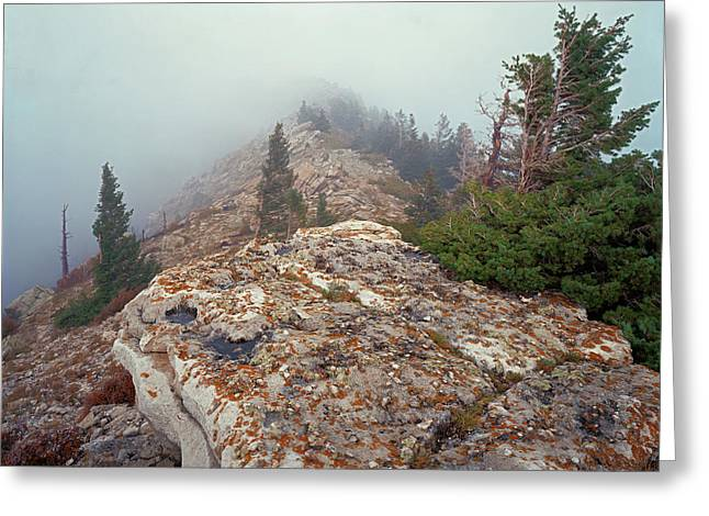 Marble View Fog Greeting Card