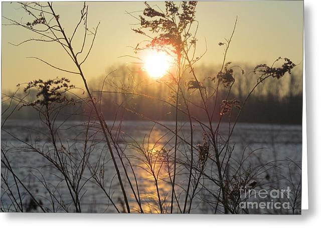March 2 2013 Sunrise Greeting Card