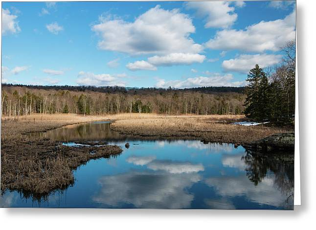 March Afternoon At Black Creek Greeting Card