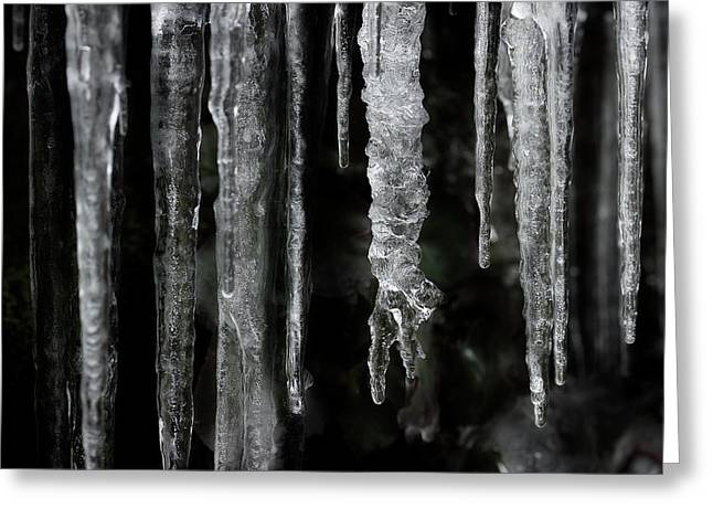 Greeting Card featuring the photograph March Icicles by Mike Eingle