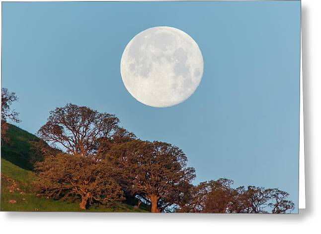 Greeting Card featuring the photograph March Moonset by Marc Crumpler