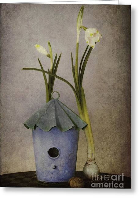 Texture Greeting Cards - March Greeting Card by Priska Wettstein