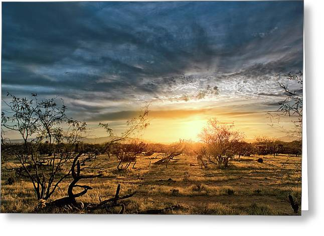 Greeting Card featuring the photograph March Sunrise by Lynn Geoffroy
