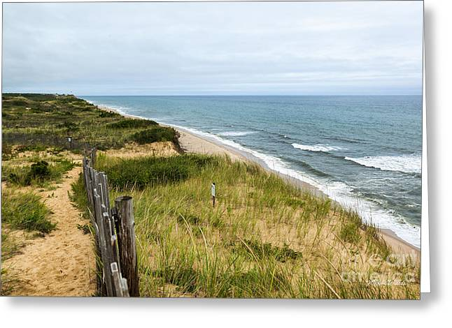 Marconi Beach Greeting Card by Michelle Wiarda