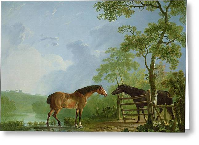 In A Tree Greeting Cards - Mare and Stallion in a Landscape Greeting Card by Sawrey Gilpin