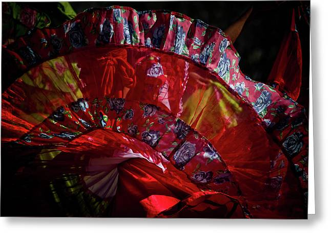 Mariachi Dancer 1 Greeting Card by Swift Family