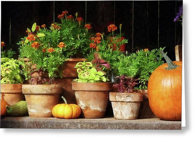 Marigolds And Pumpkins Greeting Card
