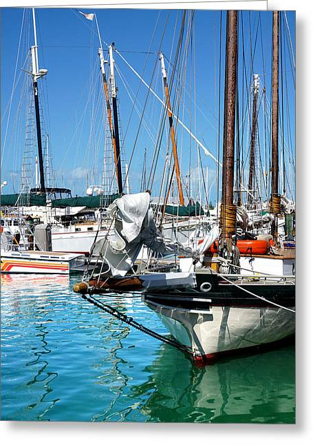 Marinas And Masts  Greeting Card