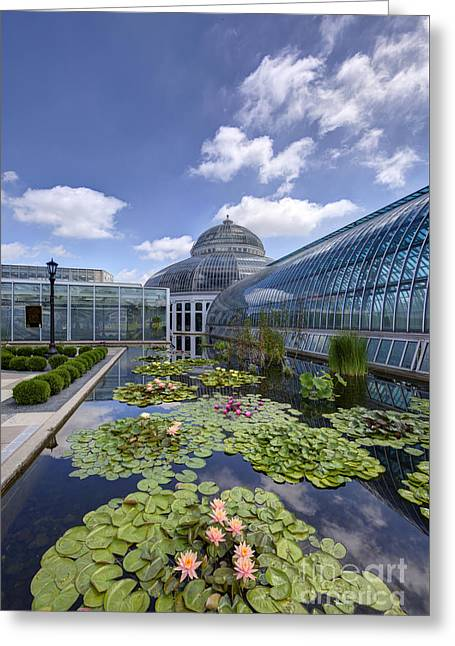 Marjorie Mcneely Conservatory At Como Park And Zoo Greeting Card