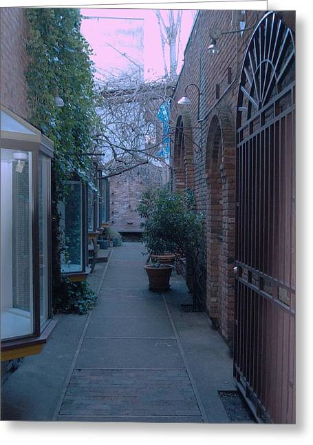 Market Alley Greeting Card by James Johnstone