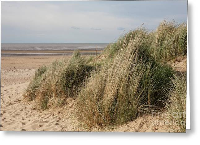 Marram Grass On The Wash Greeting Card by John Edwards