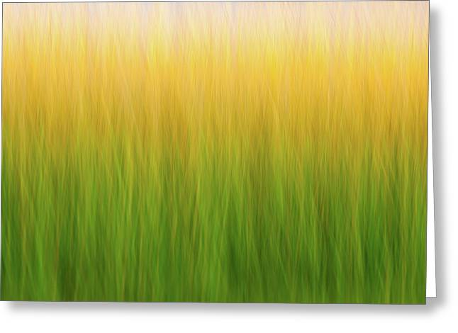 Marsh Grass Greeting Card