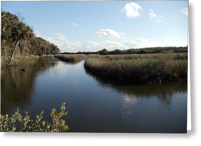 Marsh Reflection Greeting Card