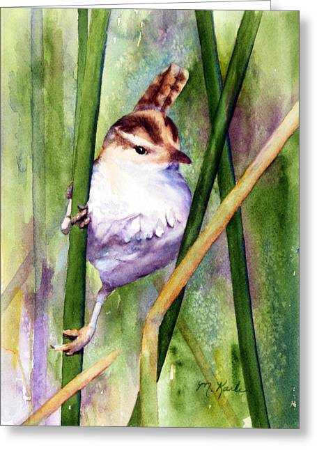 Silver Creek Marsh Wren Greeting Card