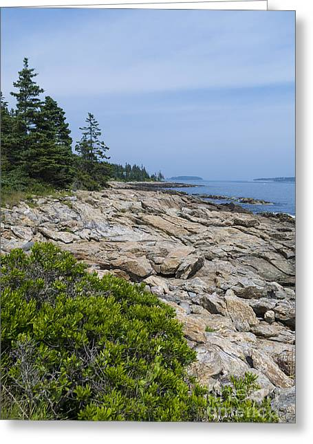 Marshall Ledge Looking Downeast Greeting Card by Patrick Fennell